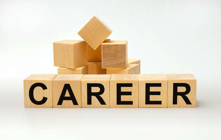 Wooden blocks with the word CAREER. Business concept