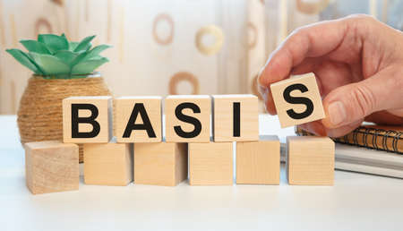 Wooden cubes with the abbreviation Basis on white