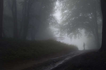 Silhouette of a man in the fog in a forest with trees