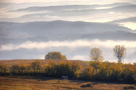Rural autumn landscape with fog over the hills Stock Photo - 10329096