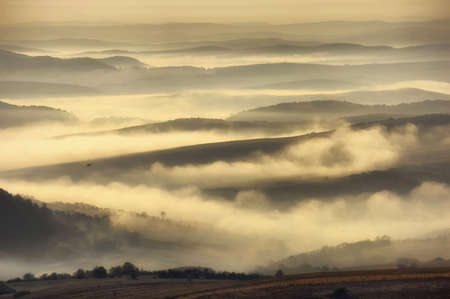 landscape with hills, fog and a bird photo