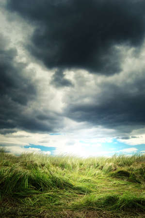 heavy storm clouds over a green grass field Stock Photo - 10589776