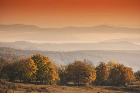 colorful trees in autumn with orange sky and mist trough the hills Stock Photo - 10589648