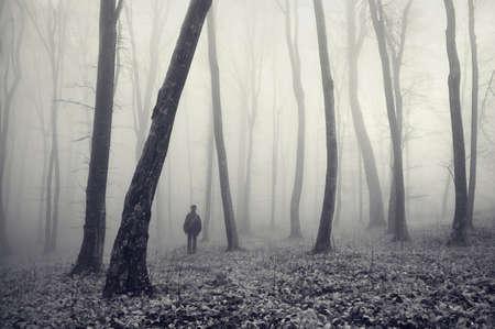 un homme perdu dans une forêt magique avec le brouillard