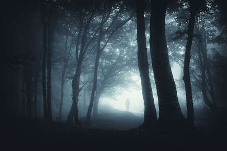 eerie: shadow sneaking in the forest wit an eerie atmosphere