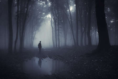 darkness: man in a forest with pond and fog after rain