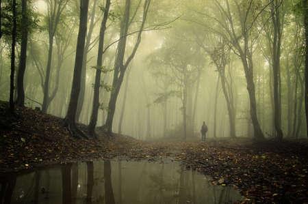 hombre de pie en un bosque verde, con la niebla y los árboles que reflejan en el agua Foto de archivo
