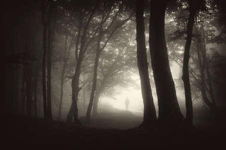 strange man person walking in a dark forest with fog