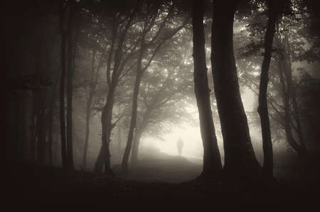 scary night: strange man person walking in a dark forest with fog