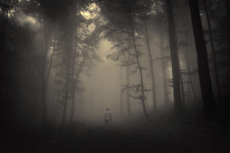 spooky landscape with a man walking through a dark forest  photo