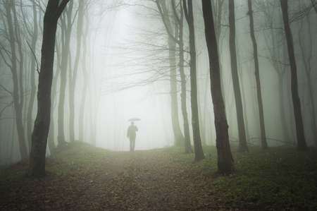 man with umbrella walking to light in a misty forest  Stock Photo