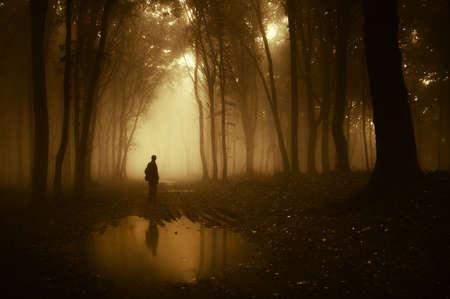 czÅ'owiek w lesie odzwierciedlajÄ…c w stawie po deszczu Zdjęcie Seryjne