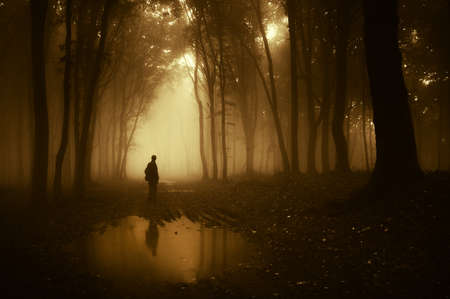 man in a forest reflecting in a pond after rain  Stock Photo