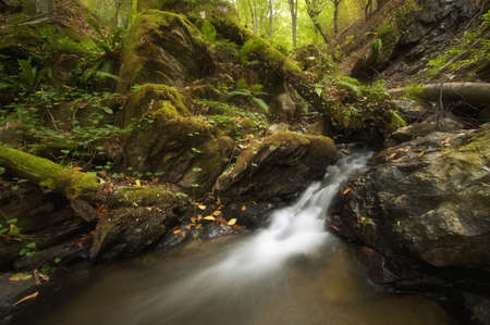 River And Waterfalls In A Wild Forest Stock Photo Picture And Images, Photos, Reviews