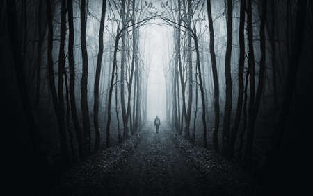 mystery woods: man walking on a path in a strange dark forest with fog  Stock Photo