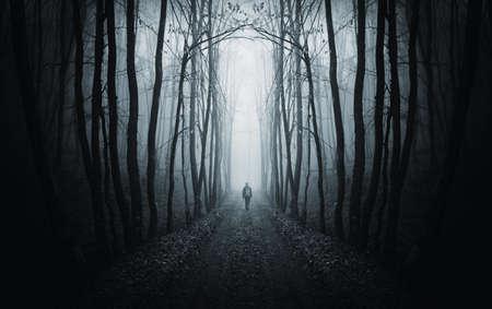 uomo che cammina su un percorso in una strana foresta scura con nebbia