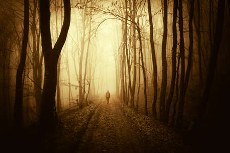 Silhouette of man in a dark forest with fog Stock Photo
