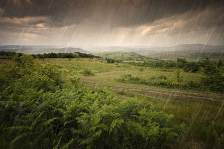 Rain in summer with clouds over green landscape Stock Photo - 17205002