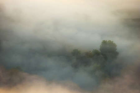 Foggy landscape in autumn with trees, low clouds photo
