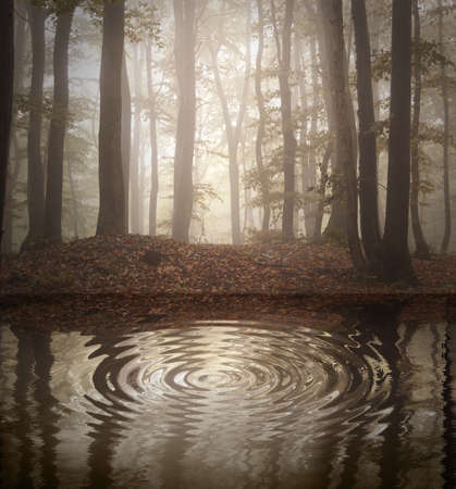 Lake in a forest with fog in autumn Stock Photo - 18129394