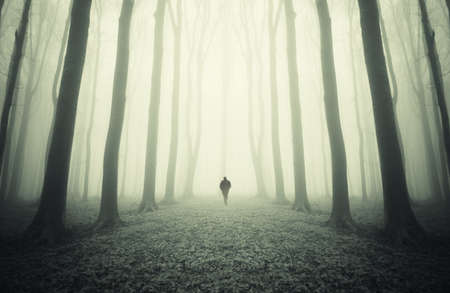 Eerie esoteric landscape with man passing in another world