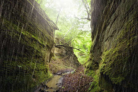 Rain in a narrow canyon Stock Photo - 18708483