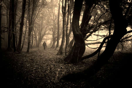 Strange man walking in a eerie dark forest  photo
