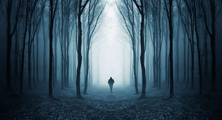 Man walking in a dark forest with fog and trees Stock Photo