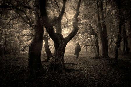 houtsoorten: Man lopen in een donker bos met mist op Halloween Stockfoto