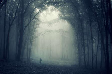Man walikng in een donkere mysterieuze bos met mist Stockfoto