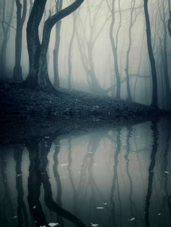 Dark mysterious forest with fog, lake and tree in late autumn on halloween photo