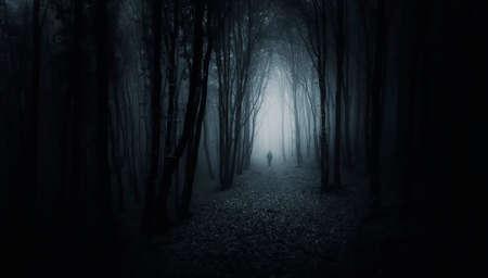 Człowiek spaceru w creepy ciemnym lesie z mgły