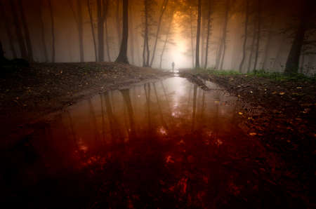 Man in a dark forest with fog and bloody river