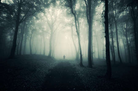 Man walking in a dark mysterious forest with fog in autumn Stock Photo