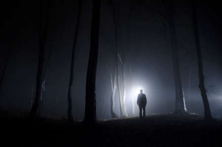mystery woods: man walking in spooky forest at night Stock Photo