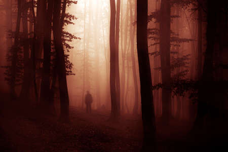 Dark spooky scary forest with strange man and red fog on halloween night photo