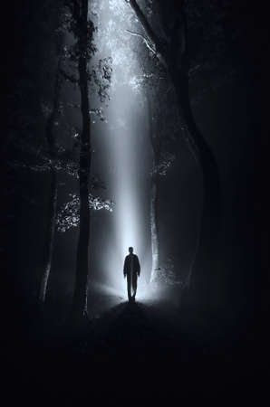 dark scene with man silhouette in forest at night Stock Photo