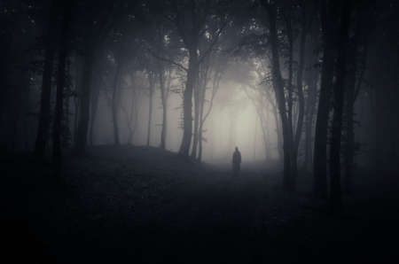 mystery woods: Ghost in spooky dark forest with fog on Halloween Stock Photo