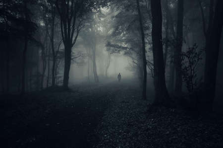 dark forest: Man on road in dark forest with fog Stock Photo