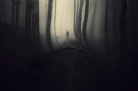 apparition: Ghost in dark mysterious forest with fog on Halloween