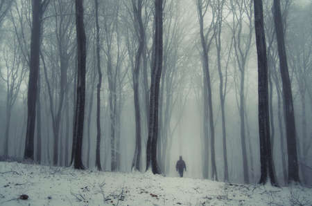 winter forest: Man in frozen forest with snow in winter Stock Photo