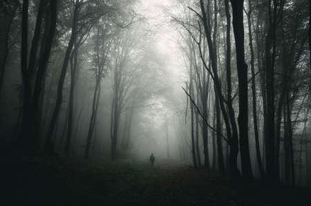 Silhouet in donkere mysterieuze bos met mist