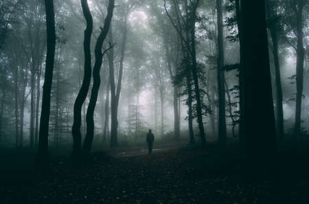 Man in dark haunted forest with mysterious fog