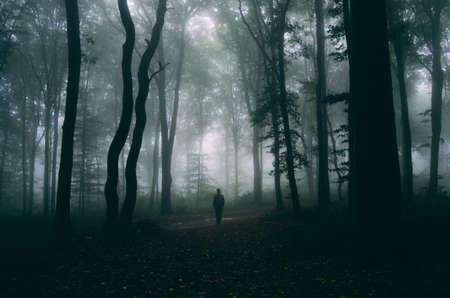 Mann im dunklen Haunted Forest mit geheimnisvollen Nebel Standard-Bild - 36574189