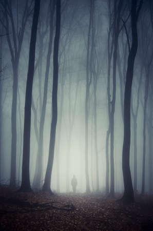 Człowiek spaceru w ciemnym lesie z tajemniczym straszny mgły na Halloween