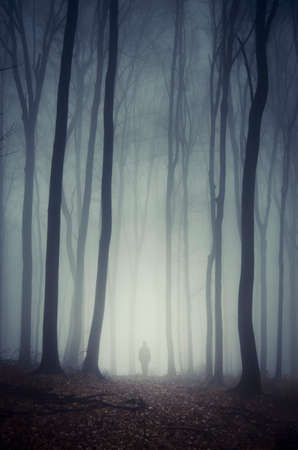 mystery woods: Man walking in dark scary forest with mysterious fog on Halloween