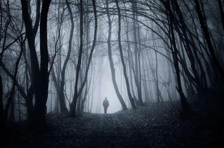 Man walking on road in dark fantasy horror Halloween forest with fog Stockfoto