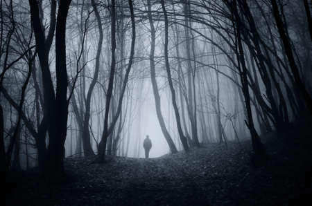 woods: Man walking on road in dark fantasy horror Halloween forest with fog Stock Photo
