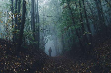 Mężczyzna w ciemnym fantazji tajemniczy las z mgły