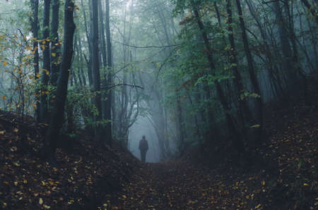 Man in dark fantasy mysterious forest with fog